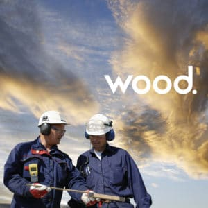 Wood Environment & Infrastructure Solutions, Inc.